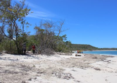 blog-punta-rucia-beach-cleaning_11]